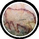 Photographie d'une peinture préhistorique dans une grotte